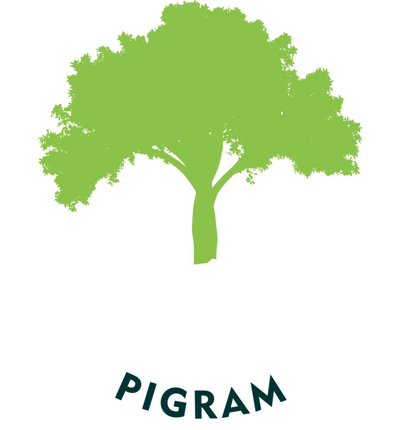 Logotipo PIGRAM